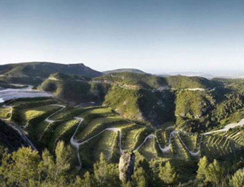 Rutas por parques naturales, ¡al lado de Barcelona!